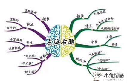 <strong>孩子智力可以培养!4个提高智商的方法,</strong>